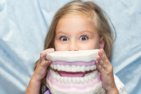 bloc-orthodontie-precoce-2